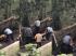 കൊലയാളിയുടെ മുന്നില് നിന്ന് പെണ്കുട്ടിയെ ചങ്കൂറ്റത്തോടെ രക്ഷപ്പെടുത്തി മലയാളി നഴ്സ്